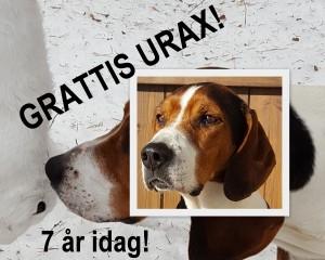 Urax FB